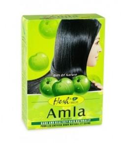 Amla - maska do włosów w pudrze - Hesh 100g